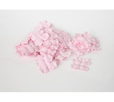 Гортензия крупная, цвет светло-розовый, KA451105