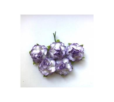 Цветы розы кудрявые фиолетово-белые,  626262