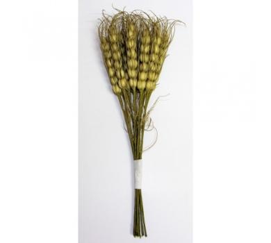 Декоративный букетик Колоски пшеницы, цвет натуральный, DKB033
