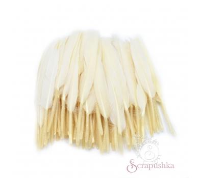 Набор перьев для декора 10 шт, цвет айвори, KA1521100