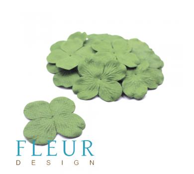 Гортензия крупная Оливковая, размер цветка 5 см, 20 шт/упаковка FD3041162