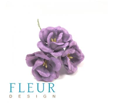 Цветы Магнолии фиолетовые, FD3133185