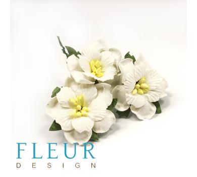 Цветы Пионы белые, FD3143015