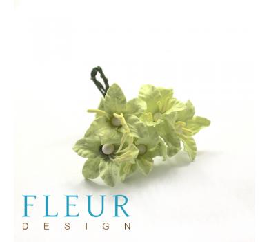Цветы мини-лилии, цвет светло-зеленые, FD3113161