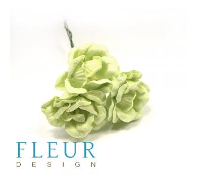Цветы Магнолии светло-зеленые, FD3133161