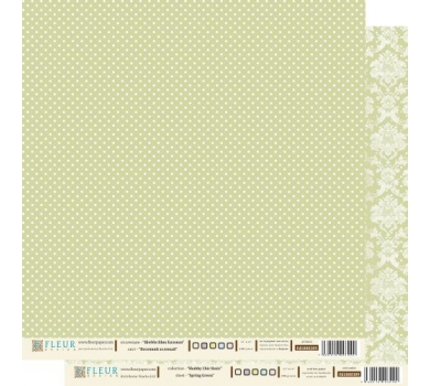 Лист бумаги для скрапбукинга Весенний Зеленый , коллекция Шебби Шик Базовая, арт. FD1000309