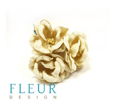 Цветы Магнолии кремовые,  FD3133147