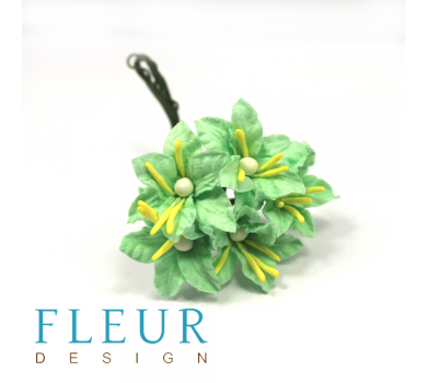 Мини-лилии мятные,  FD3113166