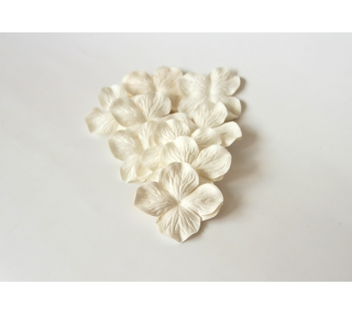 Гортензия крупная, цвет белый, KA451100