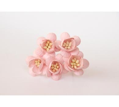 Цветочки Вишни, цвет розово-персиковый, KA411101