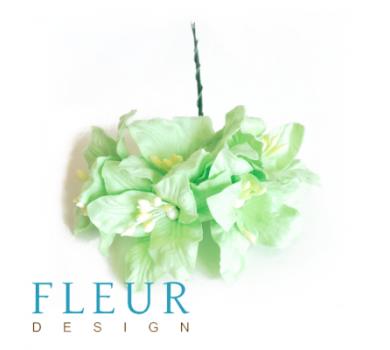 Цветы Лилии нежно-зеленые, FD3031161
