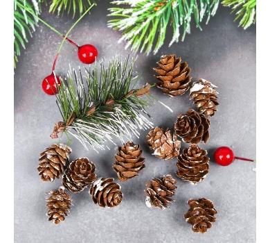 Набор новогоднего декора Морозные шишки, арт. 3608265