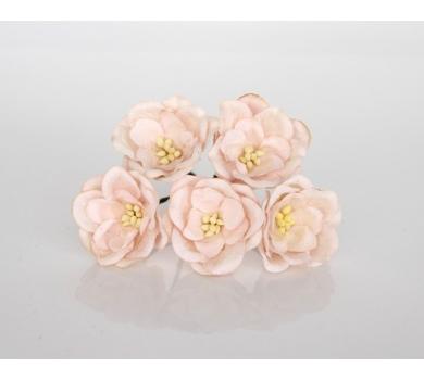 Цветочки Магнолии, цвет розово-персиковый светлый, KA401102