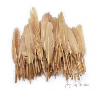 Набор перьев для декора 10 шт, цвет капучино, KA1521102