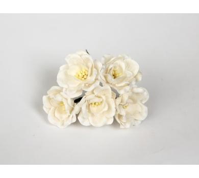 Цветочки Магнолии, цвет белый, KA401100